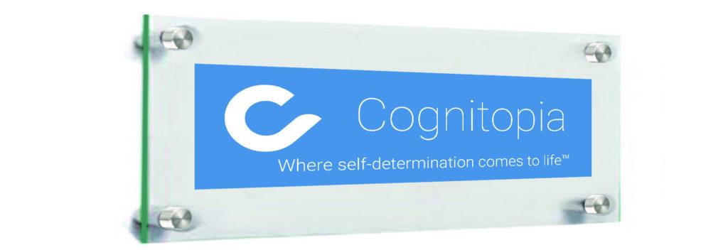 Cognitopia-starts-2003